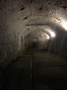 Bruce Willis apparently filmed part of Marauders (2016) in this cellar. These cellars would house the barrels of lager until the Prohibition Era.